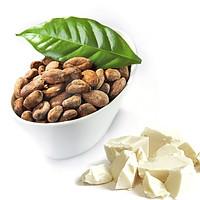 Какао масло (баттер), рафинированное, Германия